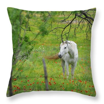 Eye On Beauty Throw Pillow