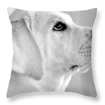 Eye On The Ball Throw Pillow