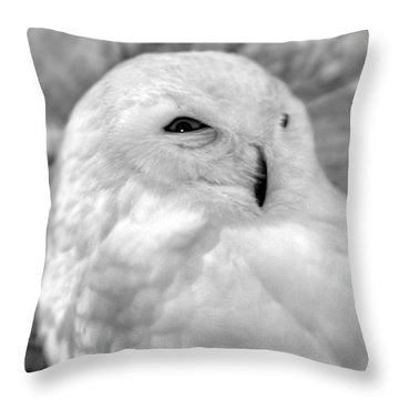 Eye On You Throw Pillow