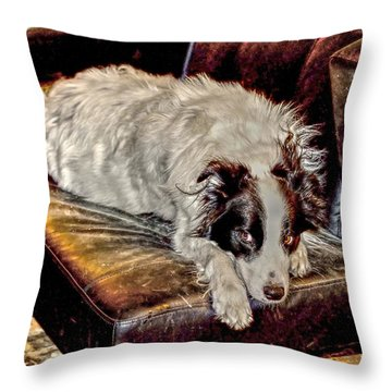 Eye Roll Throw Pillow by Aliceann Carlton