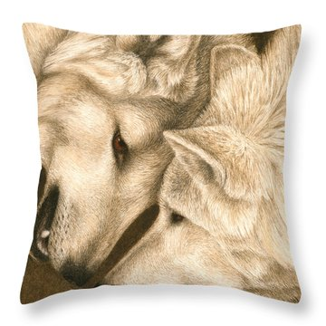 Throw Pillow featuring the painting Eye To Eye by Pat Erickson