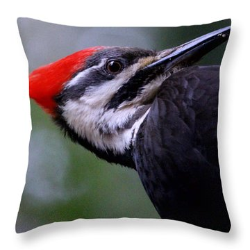 Eye To Eye With Big Woody Throw Pillow