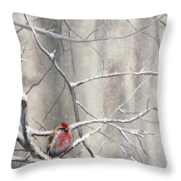 Eyeing The Feeder Alaskan Redpoll In Winter Throw Pillow