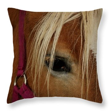 Eyeing You Throw Pillow