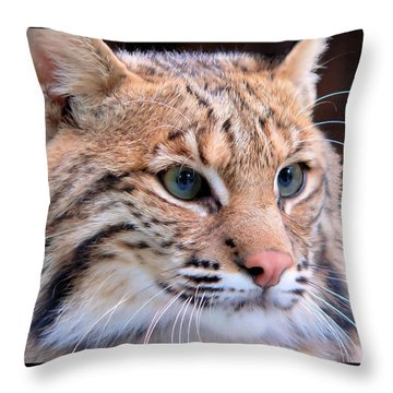 Eyes Of A Lynx Throw Pillow