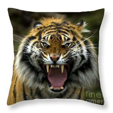 Eyes Of The Tiger Throw Pillow by Mike  Dawson