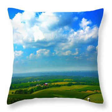 Eyes Over Farmland Throw Pillow
