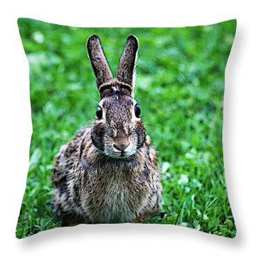 Throw Pillow featuring the photograph Eyes Wide Open by Trina  Ansel