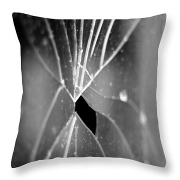 F1.4 Throw Pillow