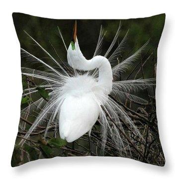Fabulous Feathers Throw Pillow