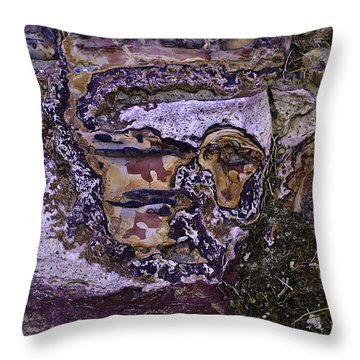 Face In The Desert 2 Throw Pillow