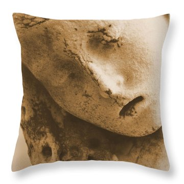 Throw Pillow featuring the photograph Face Of An Angel by Nadalyn Larsen