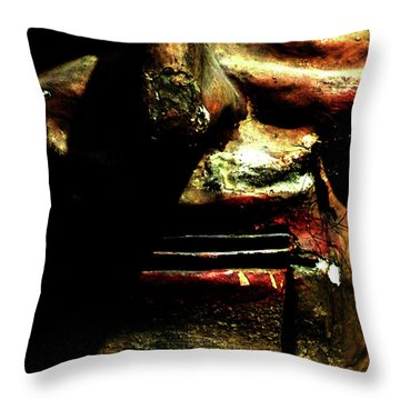 Throw Pillow featuring the photograph Face Time by Newel Hunter