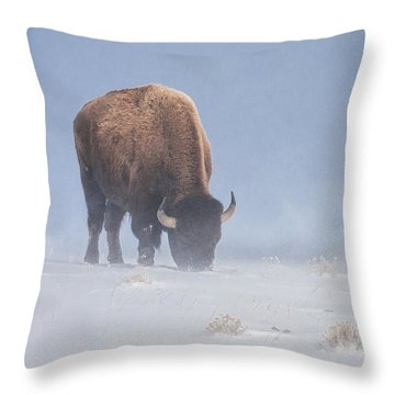 Throw Pillow featuring the photograph Faces The Blizzard by Jack Bell