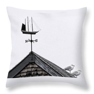 Facing South Throw Pillow by Marcia Lee Jones