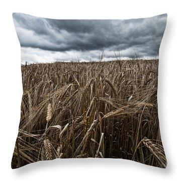 Facing The Storm Color Throw Pillow by John Farnan