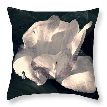 Throw Pillow featuring the photograph Faded Beauty by Photographic Arts And Design Studio
