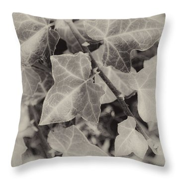 Fading Autumn Ivy Throw Pillow by Greg Jackson