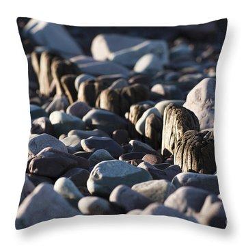 Fading Away Throw Pillow by Anne Gilbert