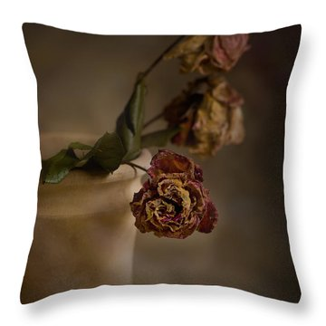 Fading Away Throw Pillow by Trevor Chriss