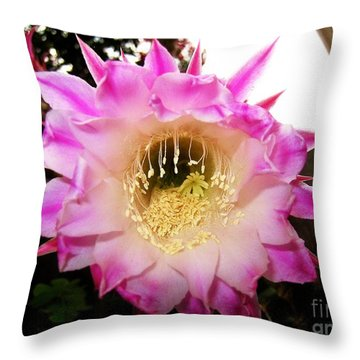 Fading Cactus Flower Throw Pillow