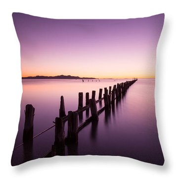 Throw Pillow featuring the photograph Fading by Dustin  LeFevre