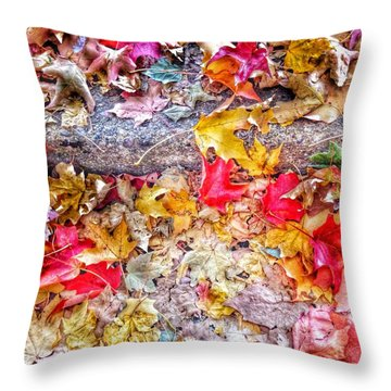 Fallen Hues Throw Pillow