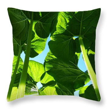 Faerie World Throw Pillow