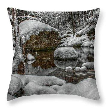 Fairey Pool Winter Upper Lithia Park Throw Pillow