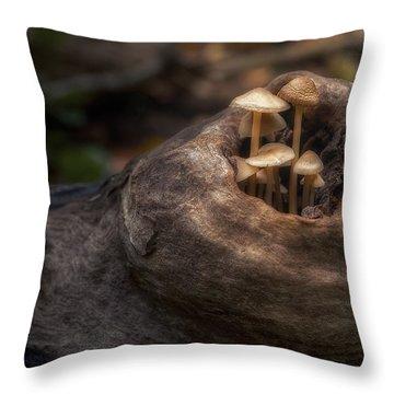 Fairie Garden Throw Pillow