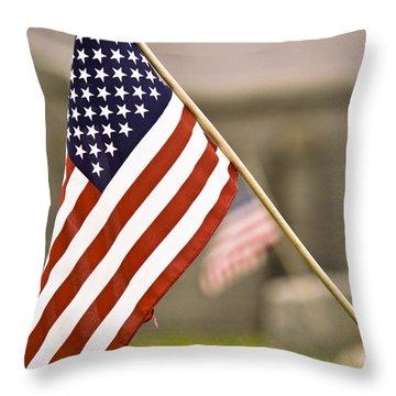 Fairview America Throw Pillow by Trish Tritz