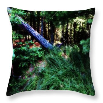 Throw Pillow featuring the photograph Fairy Forest by Jamie Lynn