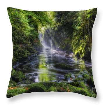 Fairy Glen Throw Pillow