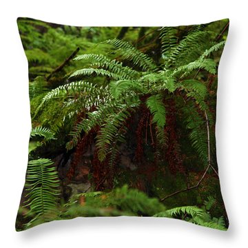 Fairy Hideaway Throw Pillow by Jeanette C Landstrom