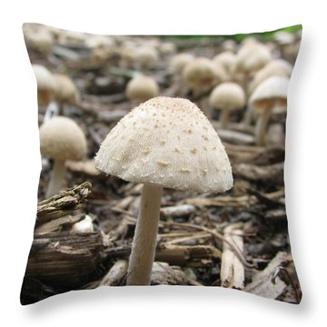 Throw Pillow featuring the photograph Fairy Homes by Mary Zeman