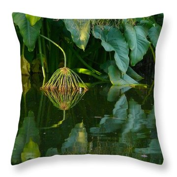 Throw Pillow featuring the photograph Fairy Pond by Evelyn Tambour