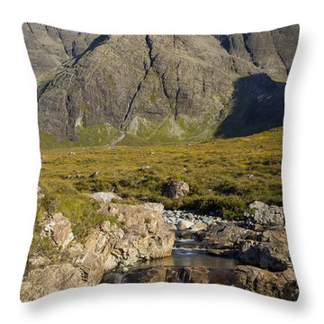 Fairy Pool - Skye Throw Pillow