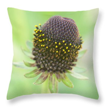 Fairy Ring Throw Pillow