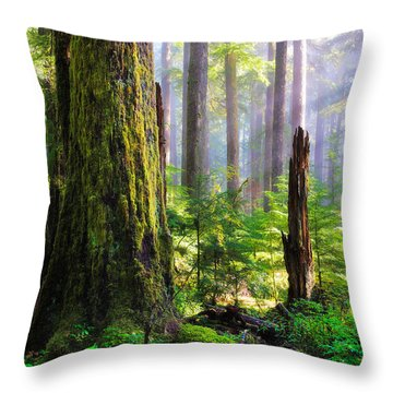 Fairy Tale Forest Throw Pillow by Inge Johnsson