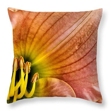 Fairy Tale Pink Daylily Closeup Throw Pillow by Madonna Martin