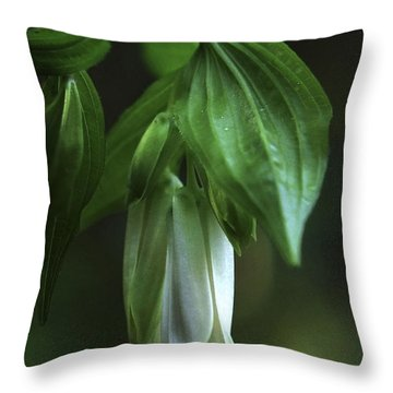 Throw Pillow featuring the photograph Fairybells Of The Forest by Betty Depee