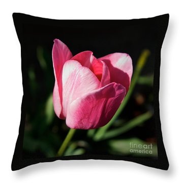 Threshold - Faith In The Light Of Dawn Throw Pillow