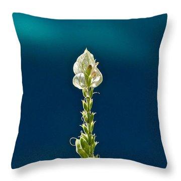 Faith Is Peace Throw Pillow