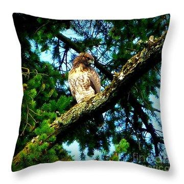 Falcon High Throw Pillow by Susan Garren