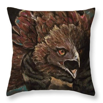 Falcon Opera  Throw Pillow