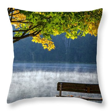 Fall 2014 Throw Pillow