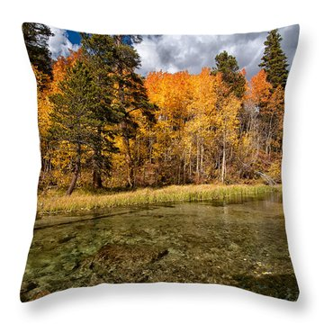 Fall Along Bishop Creek Throw Pillow by Cat Connor