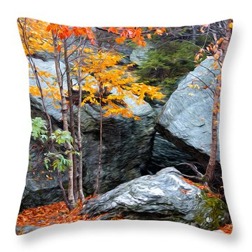 Fall Among The Rocks Throw Pillow by Bill Howard