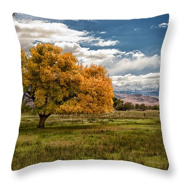 Fall And Winter Throw Pillow
