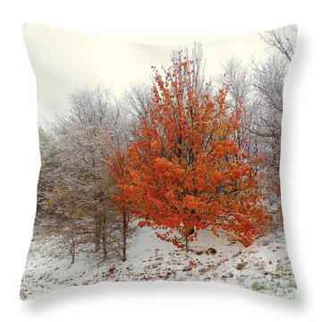 Fall And Winter Throw Pillow by Robert ONeil